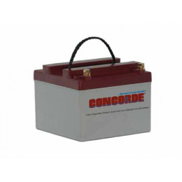 BATTERIE CONCORDE RG24-10